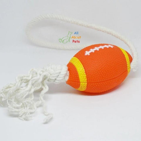 Puppy Teether Toy rugby ball with rope available at allaboutpets.pk in pakistan.