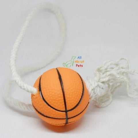 Puppy Teether Toy basketball  with rope available at allaboutpets.pk in pakistan.