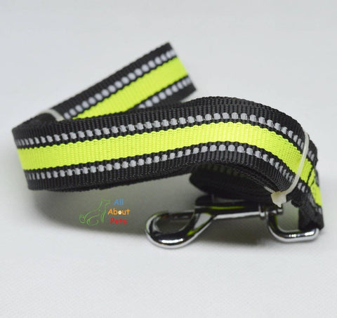 Image of Reflective Nylon Dod Leash  6ft available online at allaboutpets.pk in pakistan.