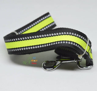 Reflective Nylon Dod Leash  6ft available online at allaboutpets.pk in pakistan.