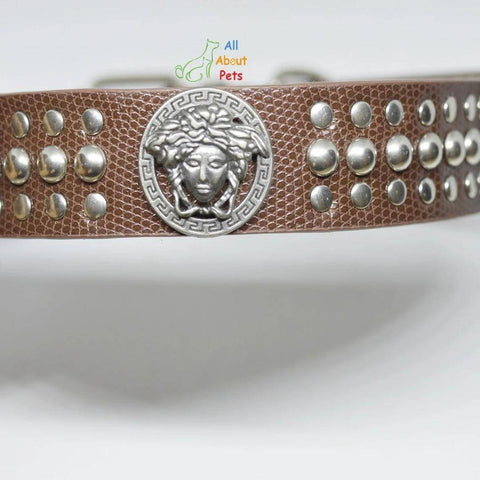 Versace Studded Leather Dog Collar Brown color available at allaboutpets.pk in pakistan.