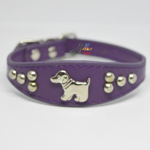 Image of Dog Shape Studded Leather Collars, puppy collar purple available at allaboutpets.pk in pakistan.