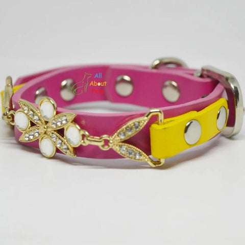 Image of Jewelry Collar For pets pink color available online at allaboutpets.pk in pakistan.