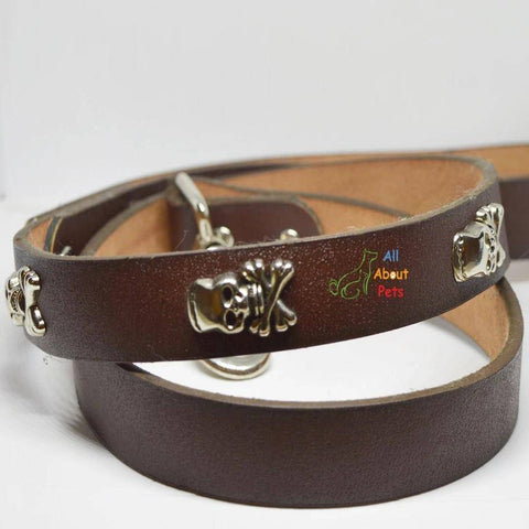 Image of Dog leash Pure Leather Studded Leash With Skulls available at allaboutpets.pk in pakistan.