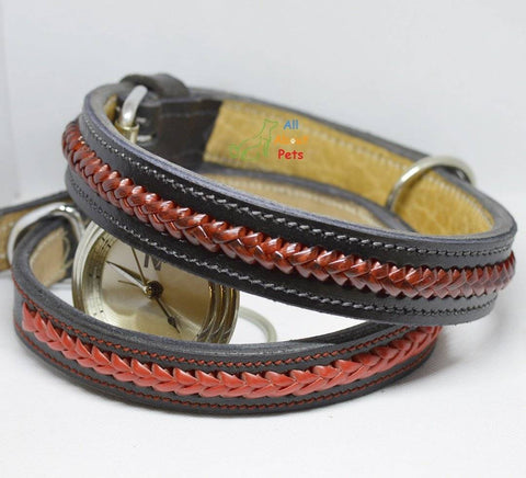 Color Braided Genuine Leather Collar , red and black dog collar, stylish dog collar, designer dog collar available at allaboutpets.pk in pakistan.