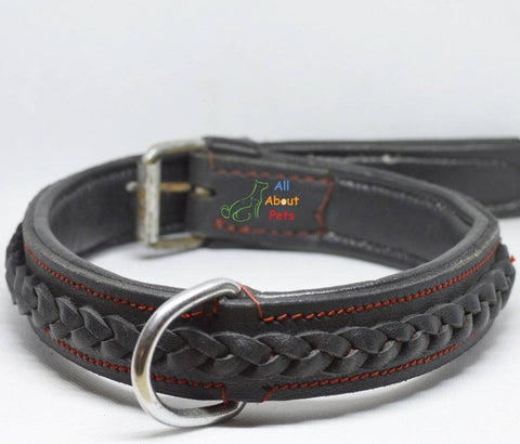 Image of Genuine Leather Braided Collar For Dogs black color available at allaboutpets.pk in pakistan.