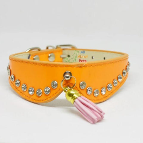 dog collars with studded crystals and tassels orange color. available at allaboutpets.pk in pakistan