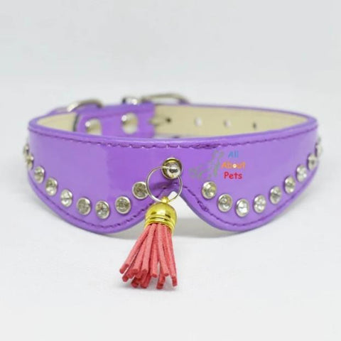 Stylish Pets collars with studded crystals and tassels purple color, available at allaboutpets.pk in pakistan