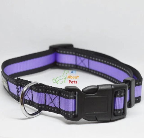 Image of Nunbell Reflective Dog Collar purple color, nylon dog collar available at allaboutpets.pk in pakistan.