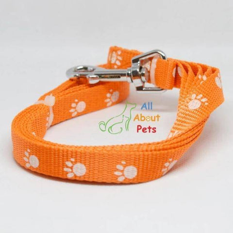 Paw Print Nylon Leash Pink  color for dogs & cats available at allaboutpets.pk in pakistan.