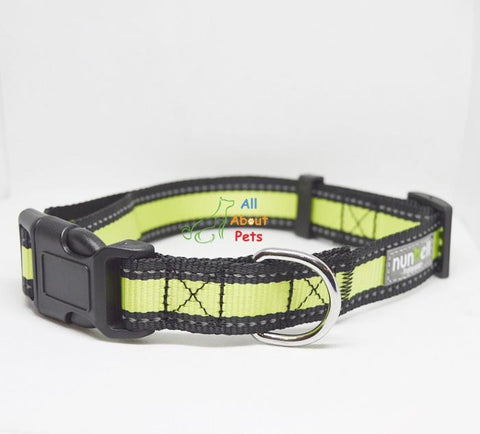 Image of Nunbell Reflective Dog Collar green color, nylon dog collar available at allaboutpets.pk in pakistan.