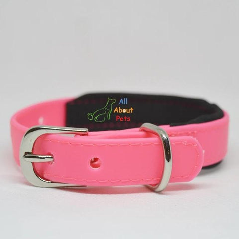 Strong PU Collar in fluorescent pink color with soft padding  2cm x 40cm available at allaboutpets.pk in pakistan