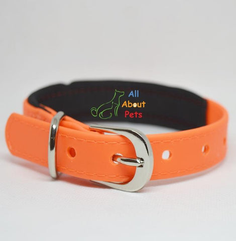 Strong PU Collar in fluorescent orange color with soft padding  2cm x 40cm available at allaboutpets.pk in pakistan