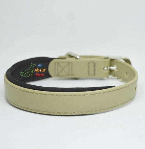 Strong PU Collar in fluorescent beige color with soft padding  2cm x 40cm available at allaboutpets.pk in pakistan