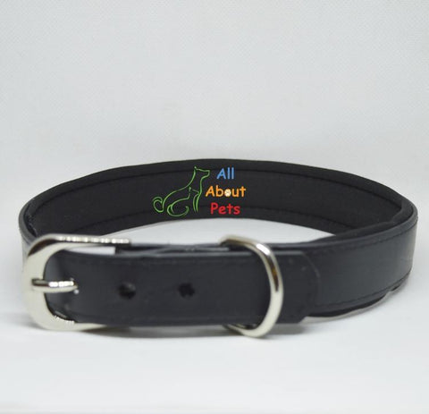 Image of  PU dog Collar black color with soft padding available online at allaboutpets.pk in pakistan