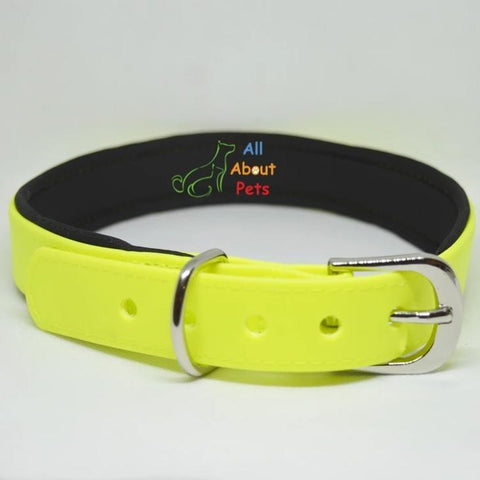 Dog collar fluorescent yellow color with soft padding  available at allaboutpets.pk in pakistan