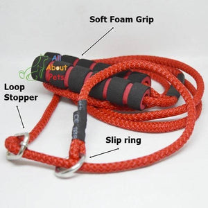 "Labrador Slip Leash red color 9mm with grip - 58"", grip handle available at allaboutpets.pk in pakistan."