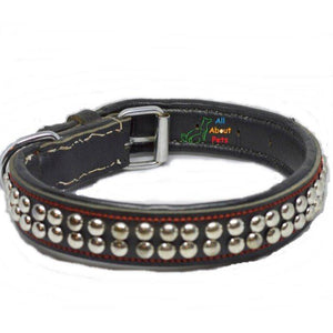 Designer Leather Collar Round Studded Double Row, dog leather collar, black studded collar available at allaboutpets.pk  in pakistan.