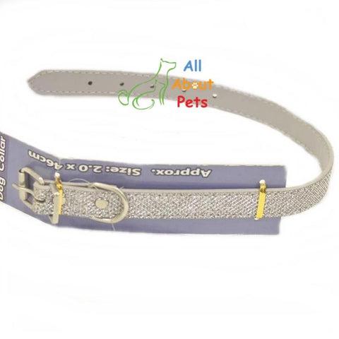 Image of Disco Glitter Dog Collar, fancy dog collar, silver dog collar available online at allaboutpets.pk in pakistan.