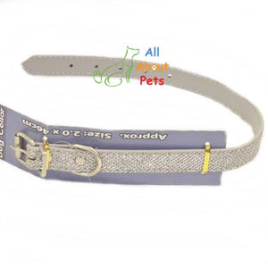 Disco Glitter Dog Collar, fancy dog collar, silver dog collar available online at allaboutpets.pk in pakistan.
