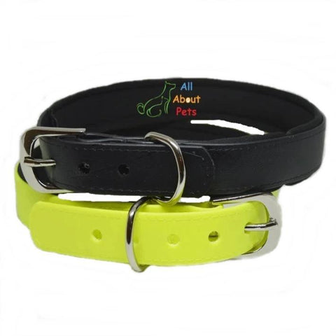Strong PU Dog Collar in fluorescent yellow color and black color with soft padding  available online at allaboutpets.pk in pakistan