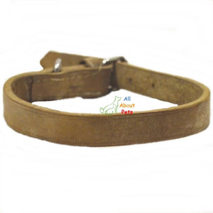 Genuine Leather Collar For Dogs 24 inches available at allaboutpets.pk in pakistan.