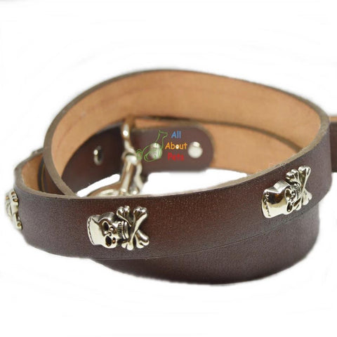 Image of Imported dog leash Pure Leather Studded Leash With Skulls available at allaboutpets.pk in pakistan.