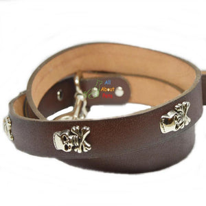 Imported dog leash Pure Leather Studded Leash With Skulls available at allaboutpets.pk in pakistan.