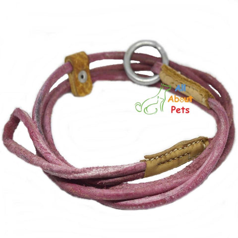 "Labrador Show Leash Leather 60"", slip leash leather for dog available at allaboutpets.pk in pakistan."