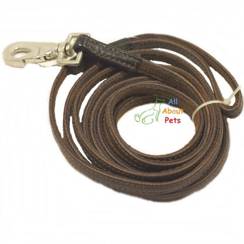 Leash Leather Long Tracking For Dogs 10ft, german shepherd show leash, rottweiler show leash available at allaboutpets.pk in pakistan.