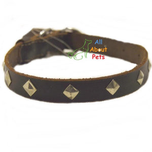 Leather square Studded Dog Collar for dogs available online at allaboutpets.pk in pakistan.