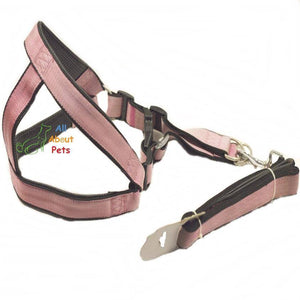 Nylon Harness & Lead Set for dogs Pink color with soft padding inside available at allaboutpets.pk in pakistan.