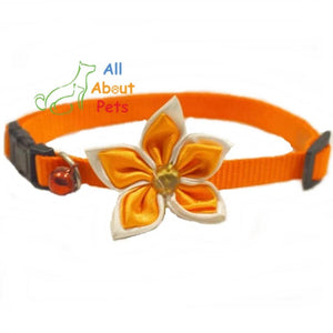 Orange Nylon Collar with Flower for Cats & Small Dogs available online at allaboutpets.pk in pakistan.