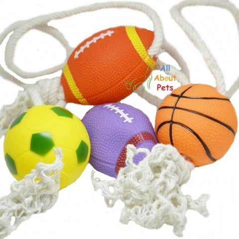 Puppy Teether Toy football and basketball  with rope available at allaboutpets.pk in pakistan.