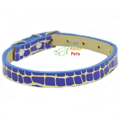 Blue Reflective Dog Collar, Rubber Collar Blue color for cats and dogs available at allaboutpets.pk in pakistan.