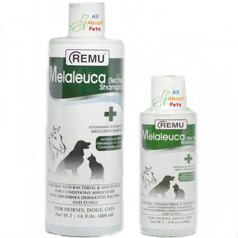 Remu Melaleuca (Tea Tree) Shampoo Dogs available online at allaboutpets.pk in pakistan.