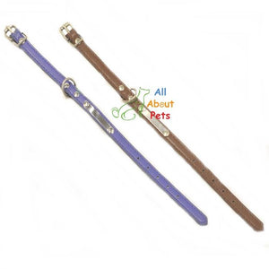 Sleek Leather Dog Collar for Small Dogs blue and brown color available at allaboutpets.pk in pakistan.