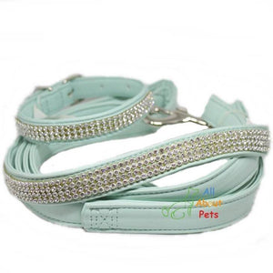 jewelry Soft leather Dog collar and leash turquoise color bling diamante available at allaboutpets.pk in pakistan