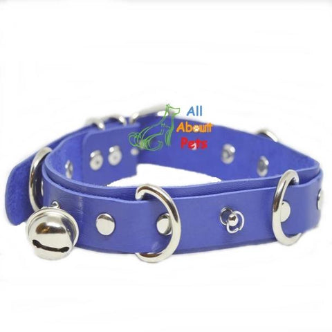 Image of Studded Dog Leather Collar blue color With Bells available at allaboutpets.pk in pakistan