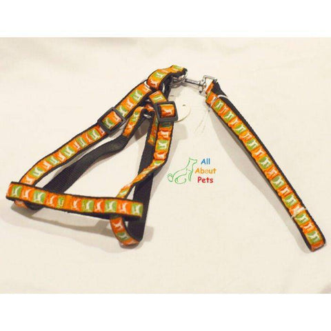Image of Assorted Multi Colored Harness & Lead for dogs, animal prints available online at allaboutpets.pk in pakistan.