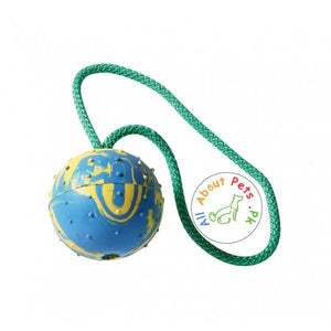 Dog Rope Teether Toy With Hard Rubber Ball & Bell available at allaboutpets.pk in Pakistan