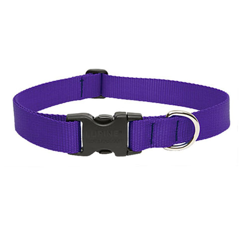 Image of Blue dog Collar nylon adjustable. Fully adjustable, with a welded steel D-ring and heavy duty side release clasp. Adjusts from 14-24 inches. 1.25 inch width. 100% heavy duty nylon collar available at allaboutpets.pk in pakistan.
