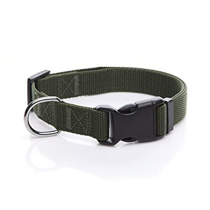 Army Green dog Collar nylon adjustable. Fully adjustable, with a welded steel D-ring and heavy duty side release clasp. Adjusts from 14-24 inches. 1.25 inch width. 100% heavy duty nylon collar available at allaboutpets.pk in pakistan.