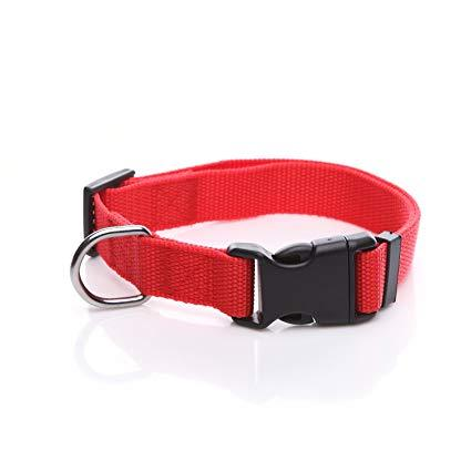 Image of Red dog Collar nylon adjustable. Fully adjustable, with a welded steel D-ring and heavy duty side release clasp. Adjusts from 14-24 inches. 1.25 inch width. 100% heavy duty nylon collar available at allaboutpets.pk  in pakistan.
