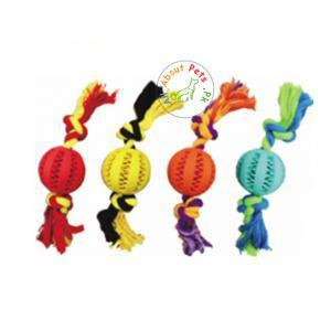 Image of green, yellow, orange and red Rubber Treat Ball with Rope for dogs available at allaboutpets.pk in Pakistan