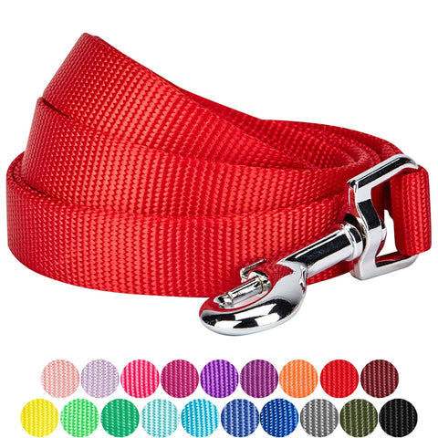 Image of Nylon Leash For  Dogs & Cats red color available at allaboutpets.pk in pakistan
