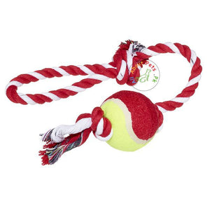 Dog Rope Toy With Tennis Ball - Assorted available at allaoutpets.pk in Pakistan