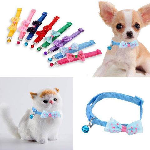Multi color collars with bow polka dots and bell for cats and small dogs, red, purple, baby blue, pink available at allaboutpets.pk in pakistan