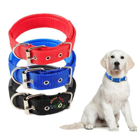 Image of Dog Collar Soft Nylon Padded Adjustable Collars in red, black, green and blue color available in Pakistan at allaboutpets.pk