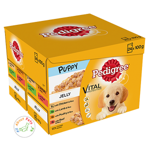 Pedigree Puppy wet Food Vital Protection Jelly 100g available at allaboutpet.pk in Pakistan